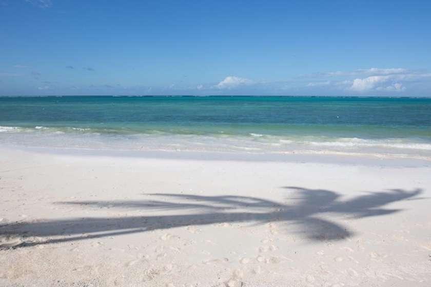 Skräddarsydd skrivarresa till Zanzibar med Eva Stilling, författare, redaktör och skrivpedagog.