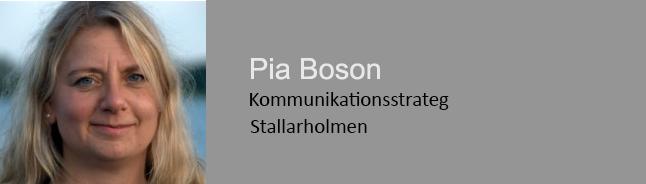 PiaBoson