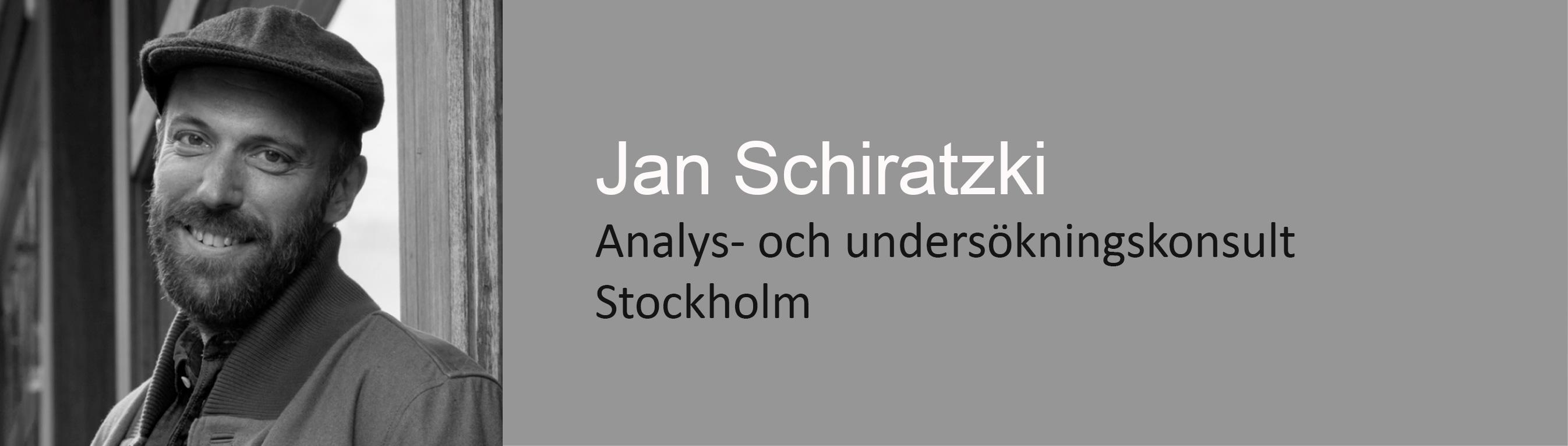Jan Schiratzki, analys-och undersökningskonsult